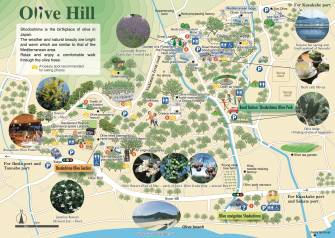 Olive Hill Walking Map ②