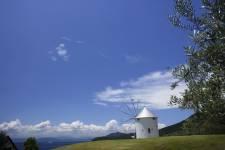 小豆島オリーブ公園2 ギリシャ風車 ©(一社)小豆島観光協会