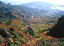 寒霞渓紅葉2