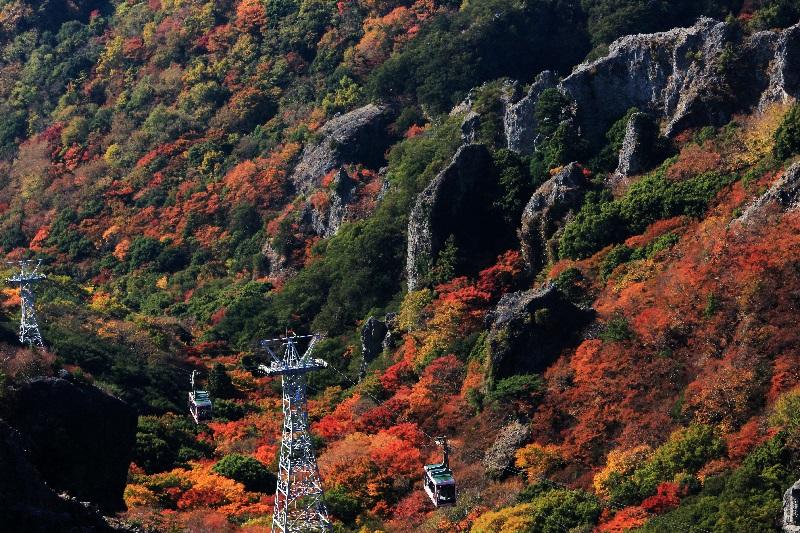 寒霞渓10 紅葉 ©小豆島総合開発株式会社
