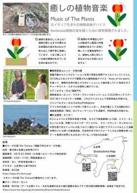 【公演中止】植物音楽ユニット・大地の種『オリーヴの森の音楽会』