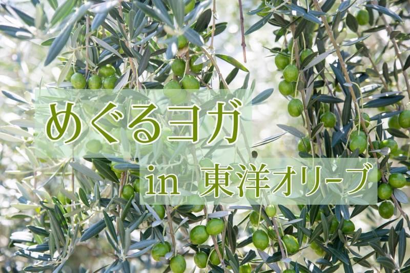 【10/19】めぐるヨガ<セルフケアレクチャー>開催