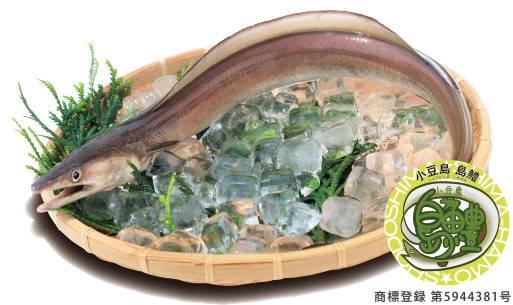 小豆島ブランド「小豆島島鱧®」