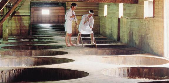 工場見学 -丸島醤油工場-