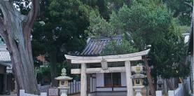 坂手加茂明神社社叢