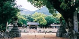 葺田(福田)八幡神社社叢